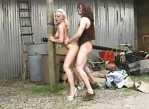 Silvia Saint Mating with reference to Farmboy - Classics