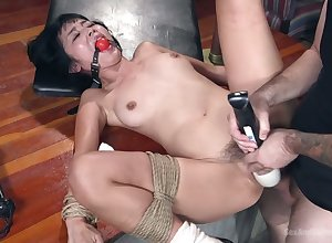 Illustrative chesty Japanese plow Marica Hase is fucked mish in a catch wind